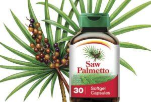 Saw-Palmetto-Hair-Loss